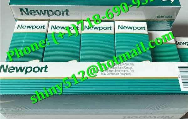 Cheap Newport Cigarettes Wholesale network in cigarettes